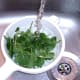 Washing salad leaves