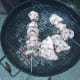 skewered chicken on the grill