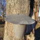 A lid helps keep rain water and debris out of the sap.