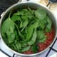 Spinach is added to simmering curry