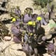 Flowers on a purple prickly pear cactus
