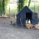 A Chicken Coop Inside A Fenced Chicken Yard