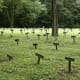 The Nameless Cemetery Letchworth Village Abandoned Insane Asylums