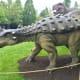 Dyoplosaurus