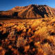 Argentina, Patagonia, grassy plateau, mountains in background