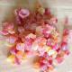 the-cherry-red-cuisinart-ice-cream-maker