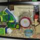 Example of a 10-gallon aquarium as a hamster home. Aspen bedding.