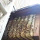 what-do-beekeepers-do-in-spring