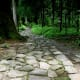 The cobblestone path leading to Shiraito falls and Takinoo shrine.