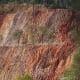 不是自然的。树木设法在光秃秃的岩石上扎根。