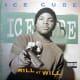 """Ice Cube—""""Kill at Will"""""""