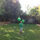 Balloon Party Game