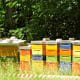 Beehives in a city park, Leipzig.