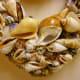 Closeup of shells layered onto the seashell wreath