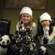 Panda Cupcakes and Birthday Pandas!