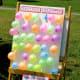 The Balloon Blaster