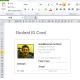 Microsoft Excel ID Card