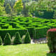 The hedge maze at VanDusen Botanical Garden