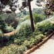 Lots of green garden spaces in this 37-acre Güell park