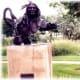 Sculptures in Loveland