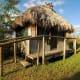 Seminole Chickee