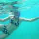 Yep, it's me! Looking goofy in snorkel gear and loving it =)