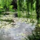Monet's Japanese water garden features willows, water lilies, and a grove of bamboo.  There are also small bridges and a Japanese bridge.
