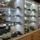 ELC hosts a mini museum of rocks, minerals and gemstones that are among the best of Club member collections.