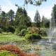 A fountain in the garden