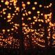 Lanterns in the Parc de la Tête d'Or