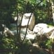japanese-tea-garden-in-houston-texas-serenity-in-hermann-park