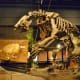 Giant Ground Sloth cast -Eremotherium Pleistocene – 700 thousand years ago