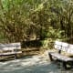 Theis Attaway Nature Center