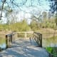 Walkout pier overlooking the pond at the Theis Attaway Nature Center