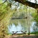 Picnic table near pond