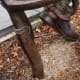 Details on front feet of a chair on Wonderland Sculpture