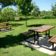 Picnic Tables in Mandell Park