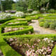 Manicured beds in Clio garden