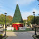 Central Green Park decorated for Christmas