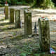 "from the photographer:  ""As we walked the short path to these 13 'Unknown Confederate' graves, I felt as if the very air around me was vibrating"""