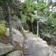 Ocean Path near Otter Cliffs