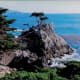 Lone Cypress and trademark for Pebble Beach