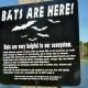 Bat house sign