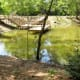 One of two fishing piers at Kickerillo-Mischer Preserve