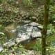 Rummel Creek