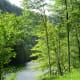 Pine Creek from eastern shore, Leonard Harrison State Park
