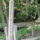 Turkey Path and Little Fourmile Run at Pine Creek Rail Trail