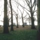 Battery Park, December 2002.