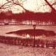 Central Park, Christmas Eve, 1983.