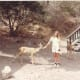 Every summer after the children came to us, we would attend a Christian family camp on Catalina Island at Campus By the Sea. On this particular year, the deer were very bold about coming into the camp, seemingly not at all afraid of people. Naturally